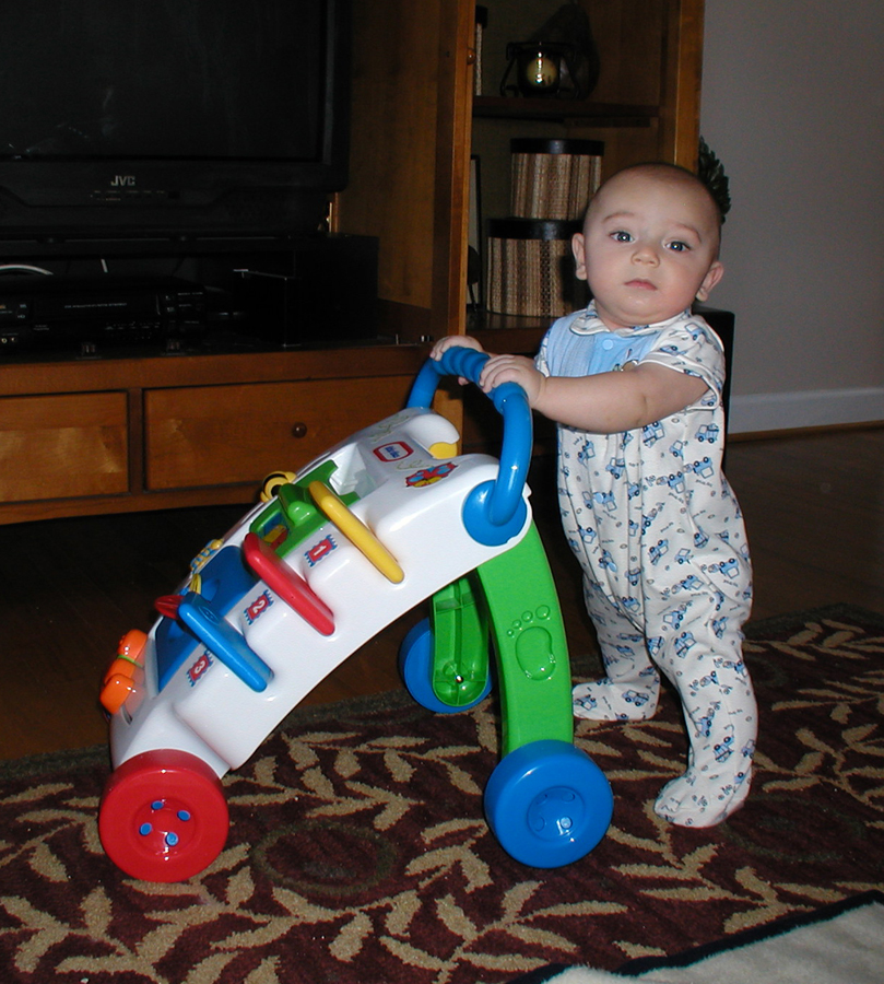 Name:  Max 5 months 1 small.jpg Views: 2106 Size:  594.8 KB