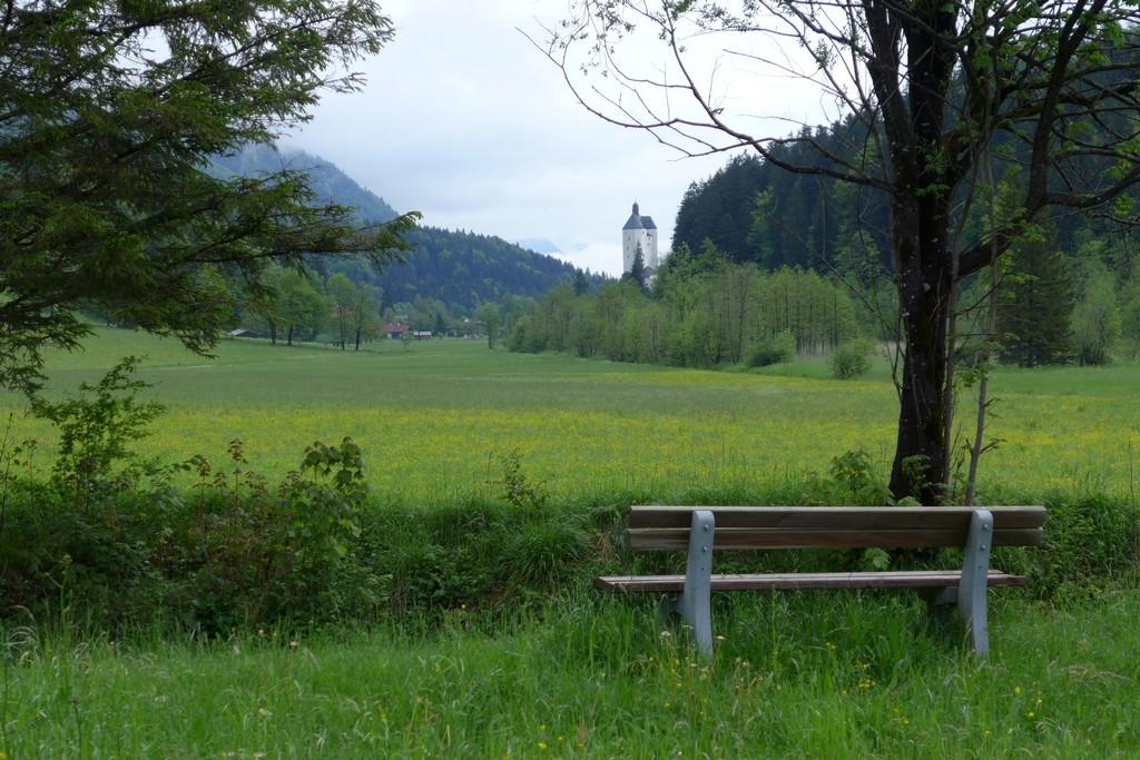 Name:  schlossblick  P1000992.jpg Views: 1874 Size:  261.1 KB